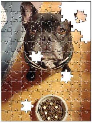 Jigsaw9877256