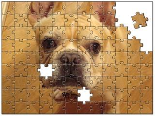 Jigsaw6438121